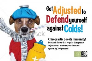 Get-adjusted-for-your-ailements-chiropractic-marketing-postcards-cheap